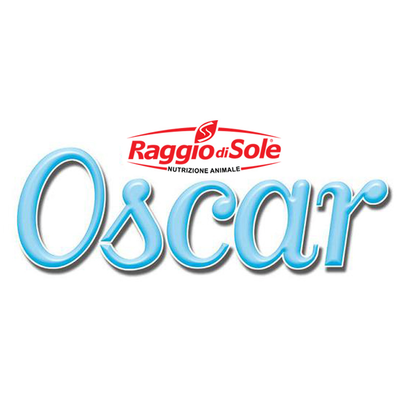 Oscar 800x800